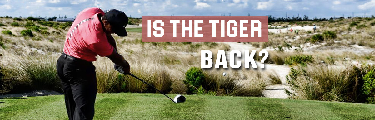 Tiger Woods 2018 Fantasy Golf Projections